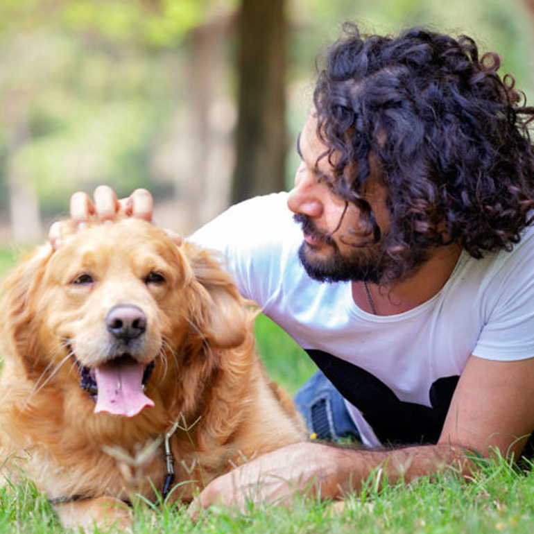 Summer with your pet