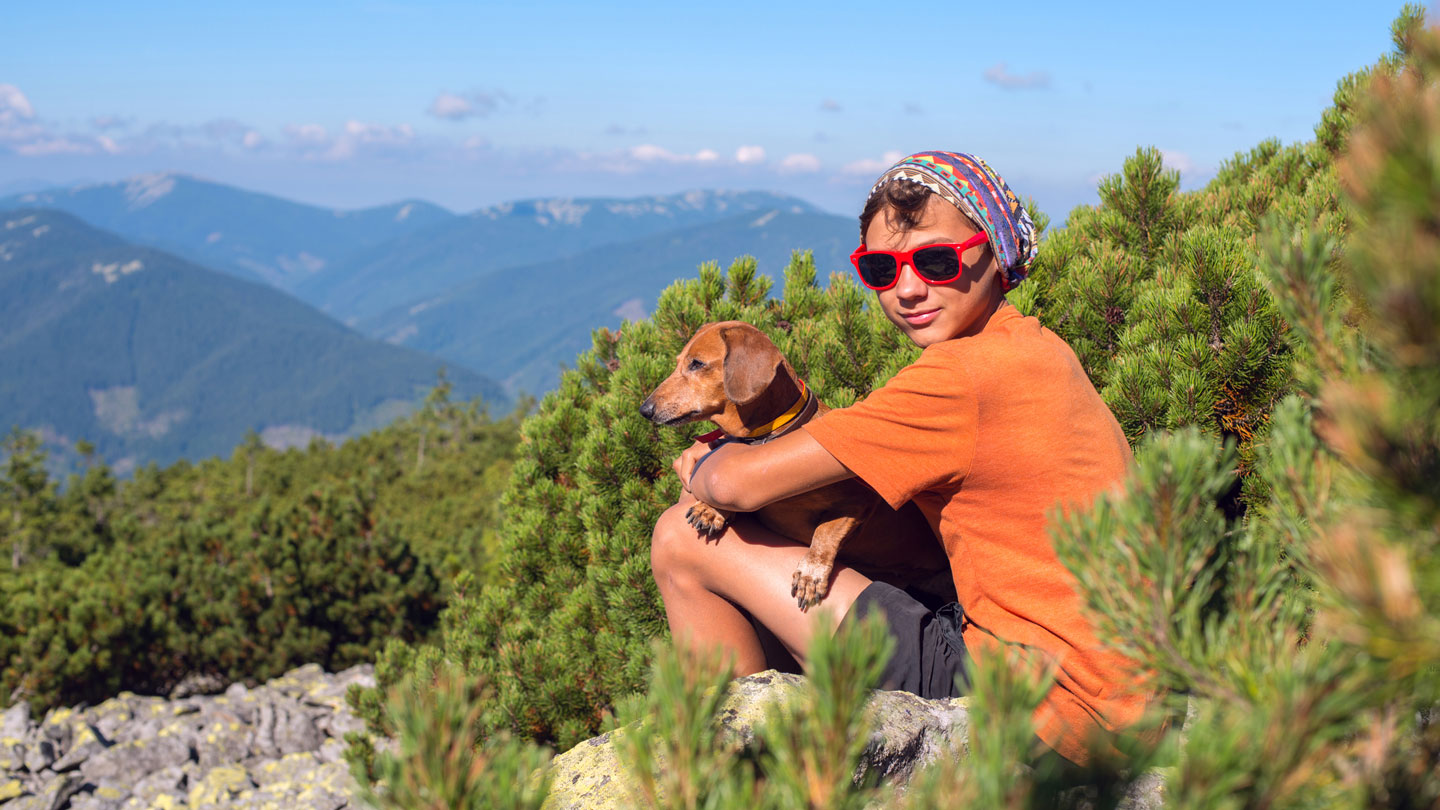 pets in summer -hiking