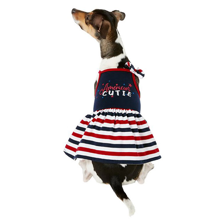 4th of July Dog Outfits - flag collar