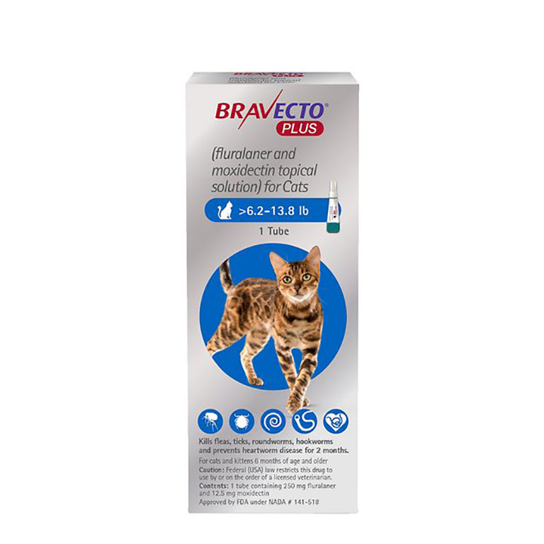 Flea and Tick Treatments for Cats - bravecto
