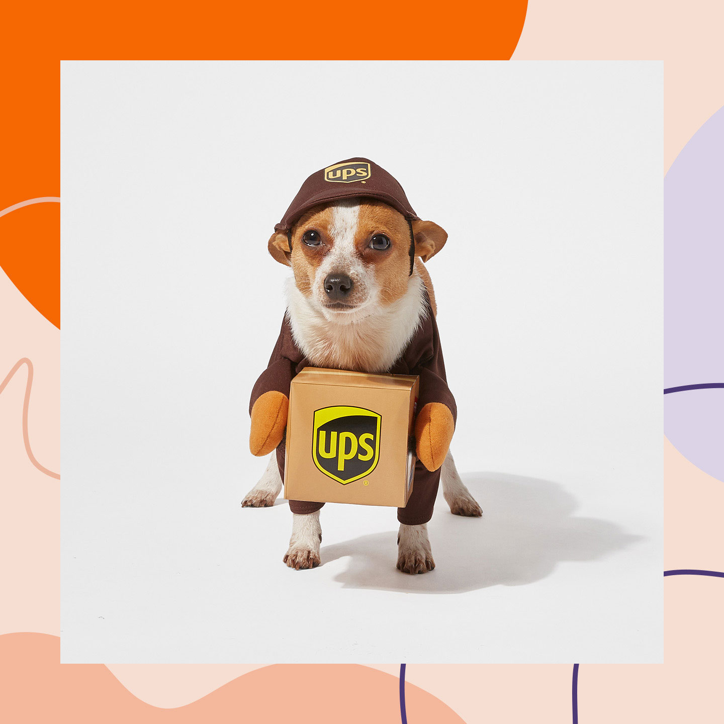 Best Dog Halloween Costumes 2020 Buying Guide: The Best Dog Halloween Costumes for 2020