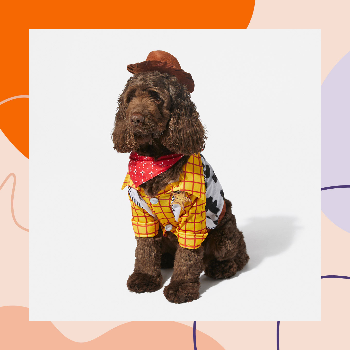 Halloween Costumes for boy Dogs