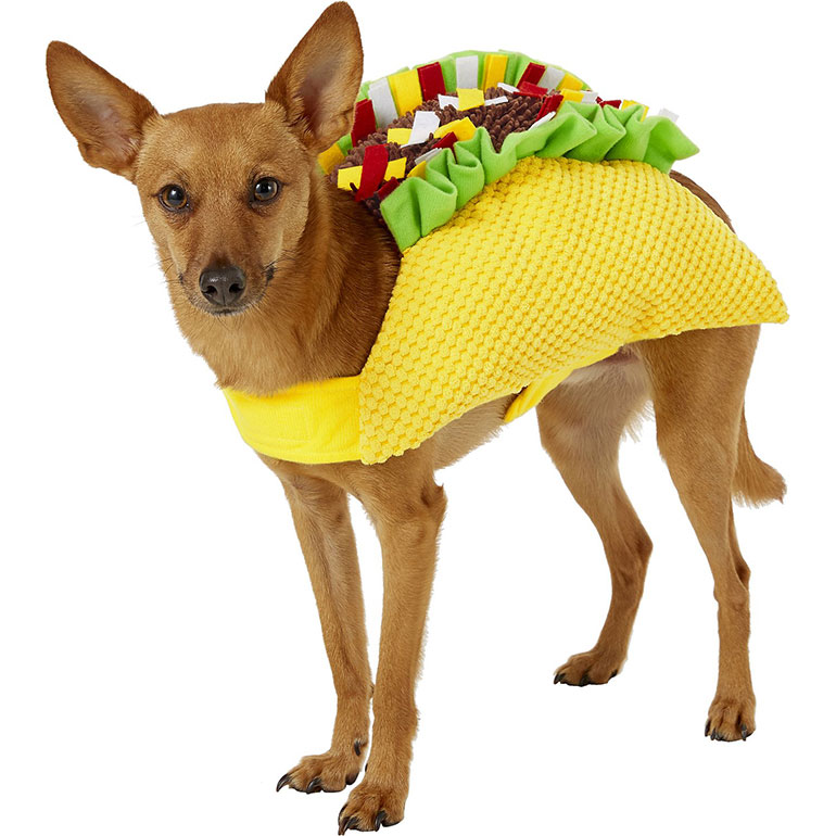 Small Dog Halloween Costumes - taco dog