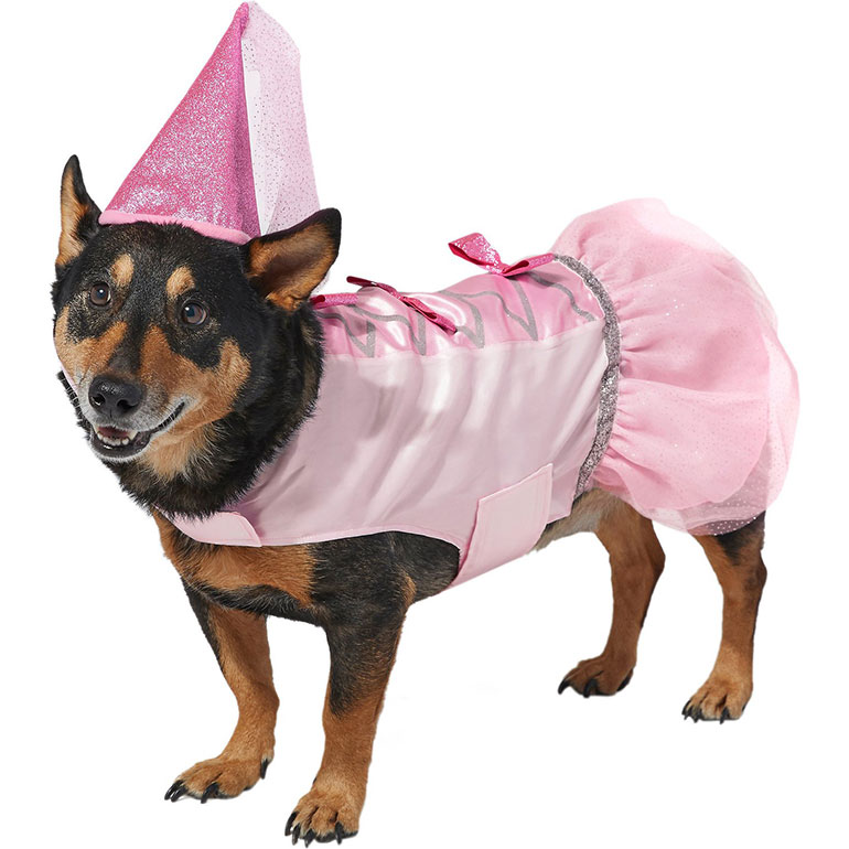 Halloween Costumes for Girl Dogs - princess