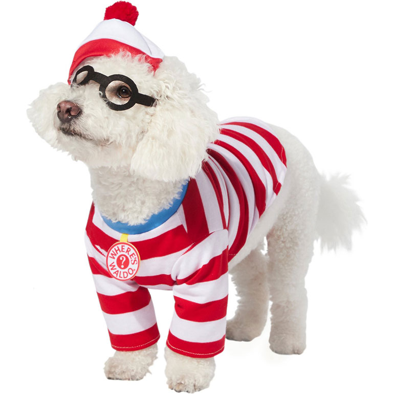 boy dog costume - waldo
