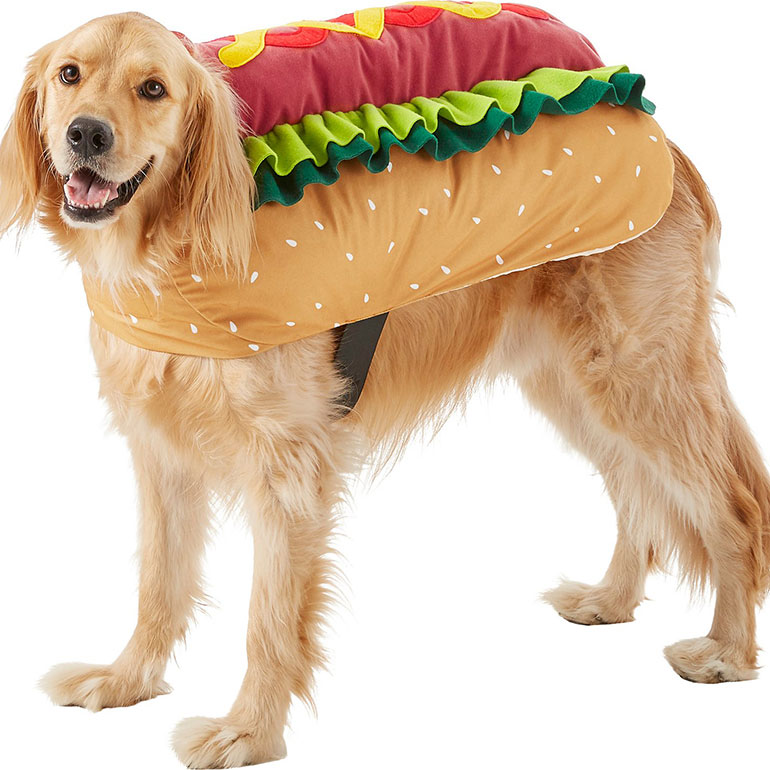 funny dog costume - hot dog