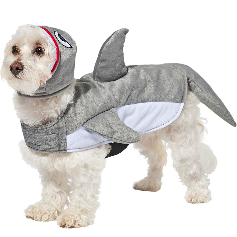 funny dog costume - shark