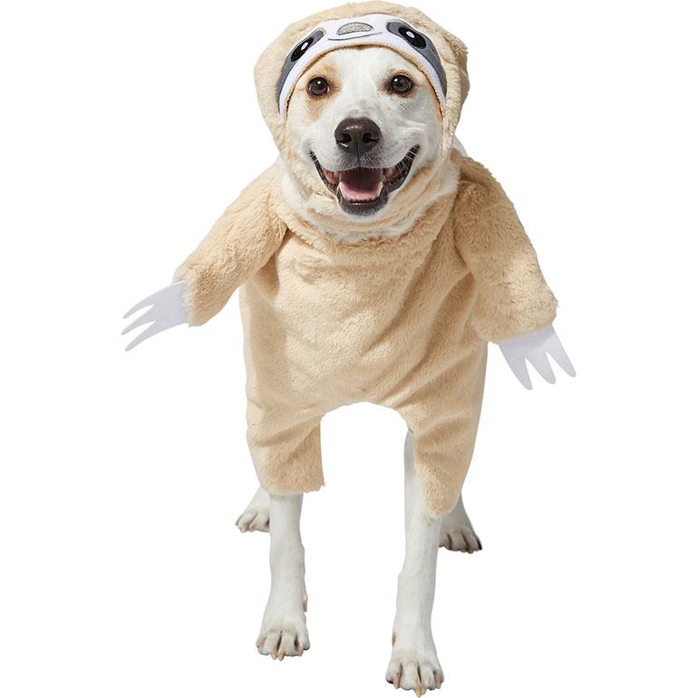 walking dog halloween costume - sloth