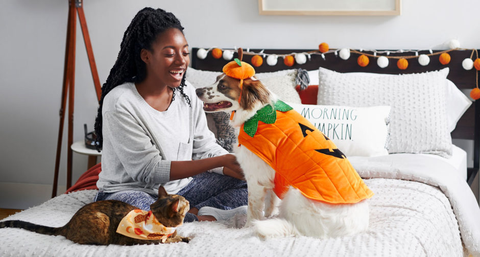 Halloween with pets