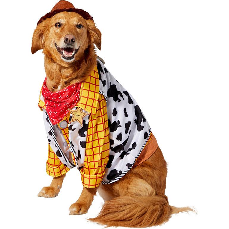 dog Halloween costume ideas - Woody