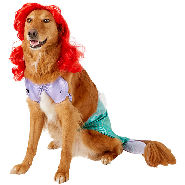 dog halloween costume ideas - little mermaid ariel