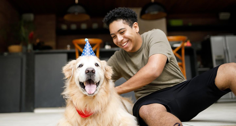 universal shelter pet birthday