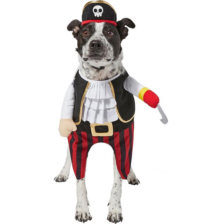 large dog halloween costumes- pirate