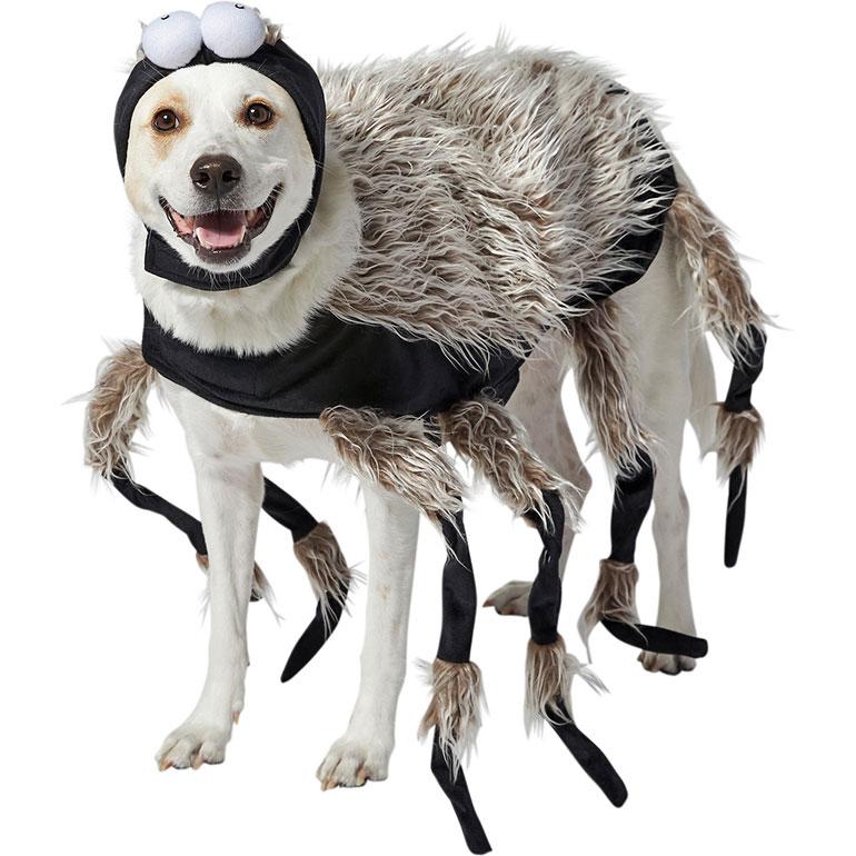 large dog halloween costumes - spider