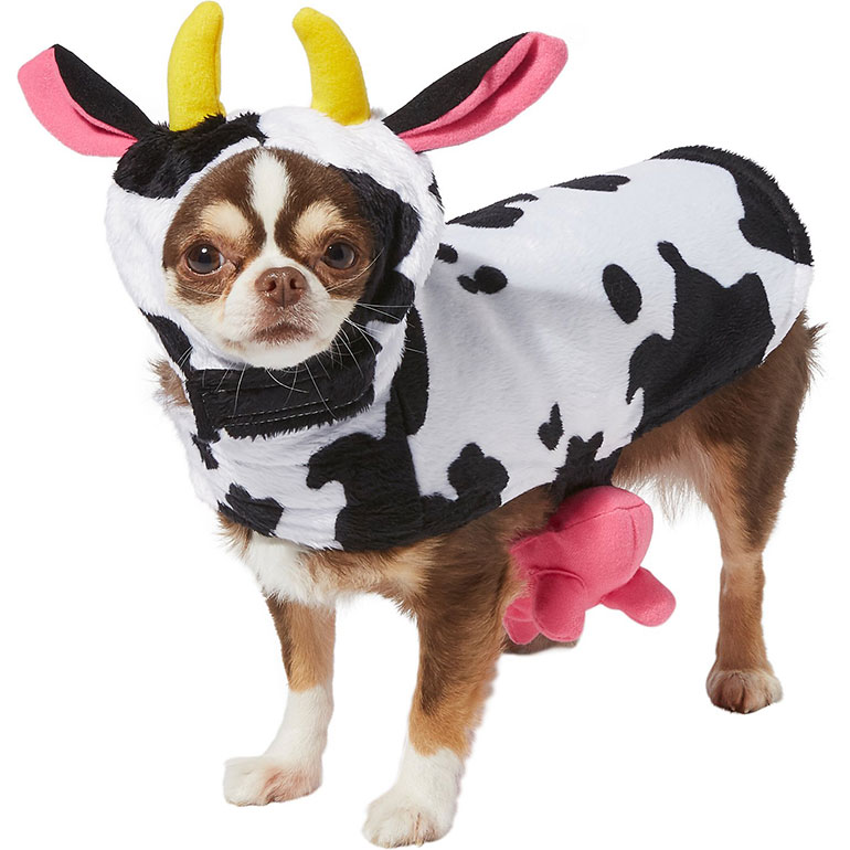 Small Dog Halloween Costumes - cow