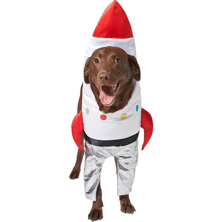 dog halloween costume -spaceship
