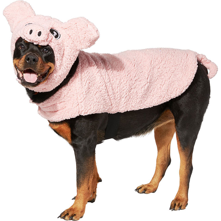 cute dog halloween costumes pig.