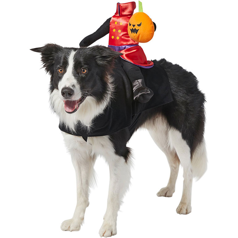 scary dog costumes headless horseman