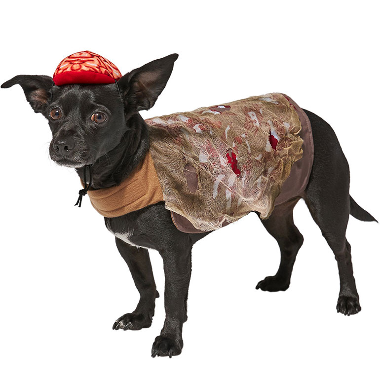 scary dog costume - zombie