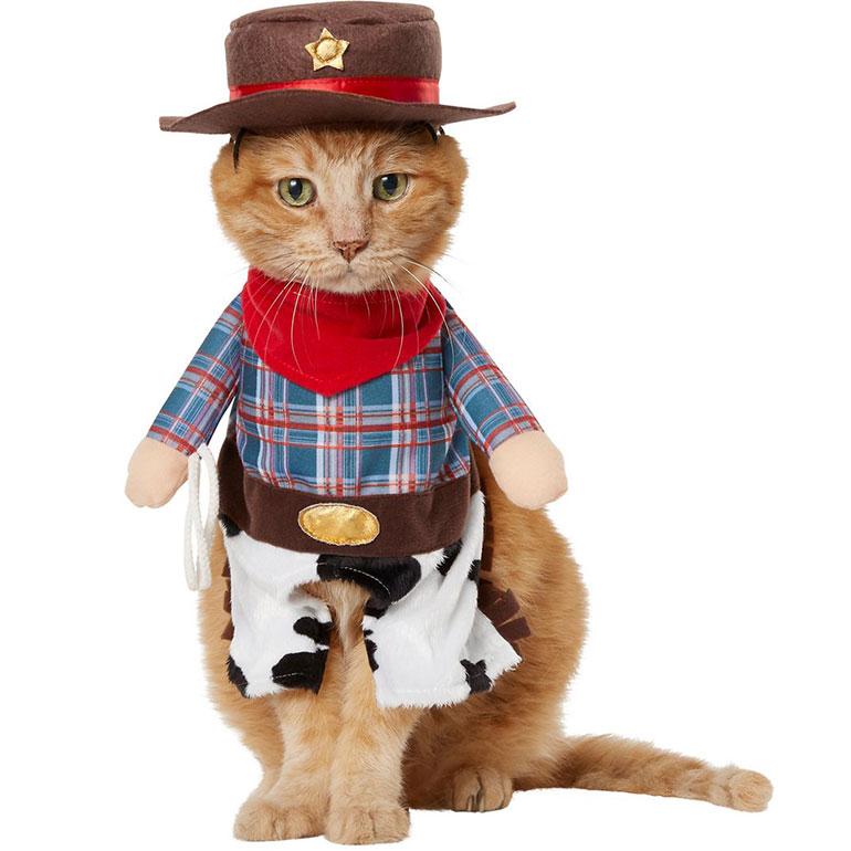 funny cat costumes -cowboy