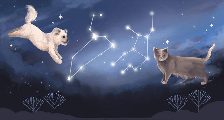 Monthly Horoscope