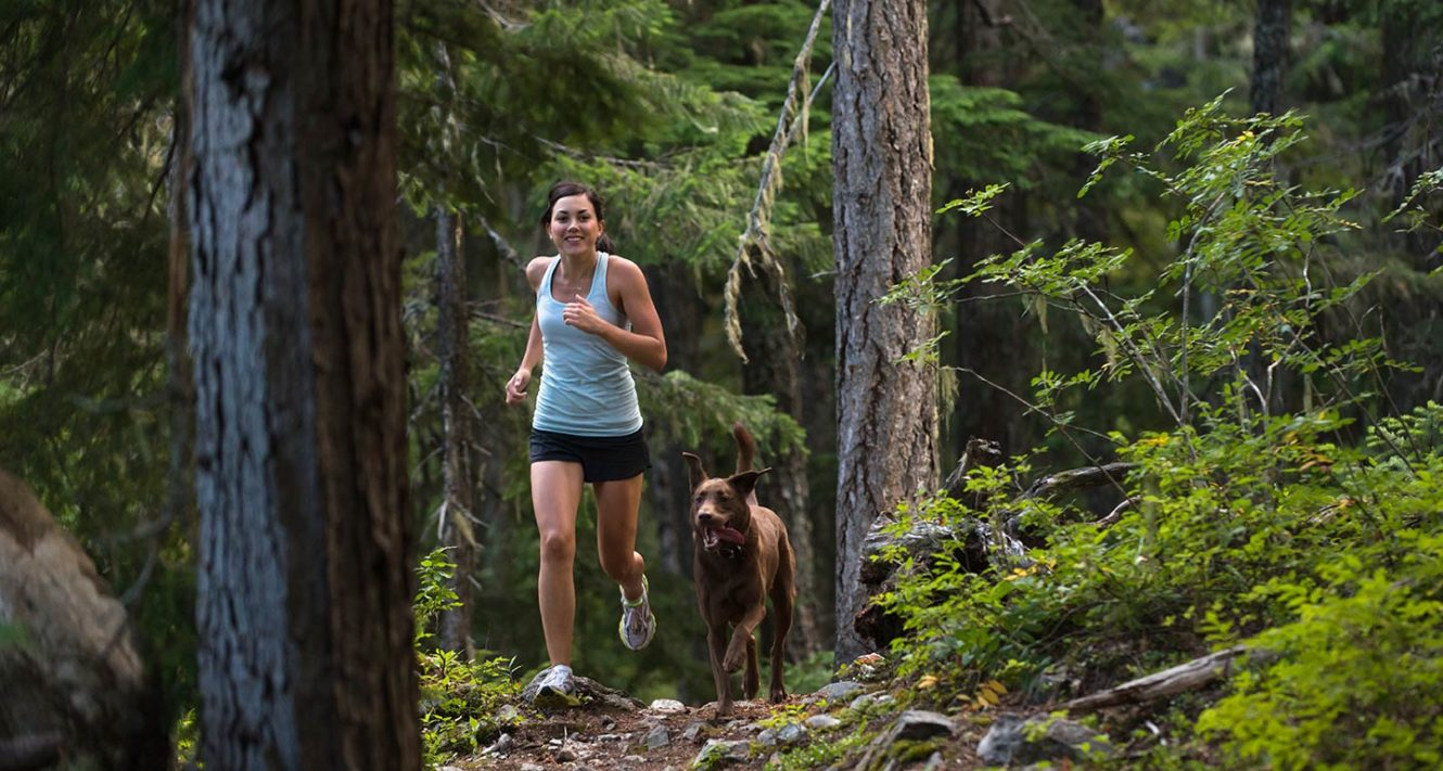 dog-friendly hikes