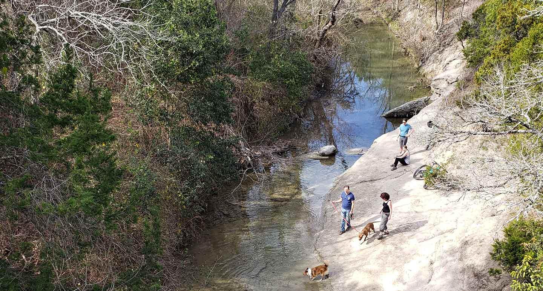 dog-friendly hikes