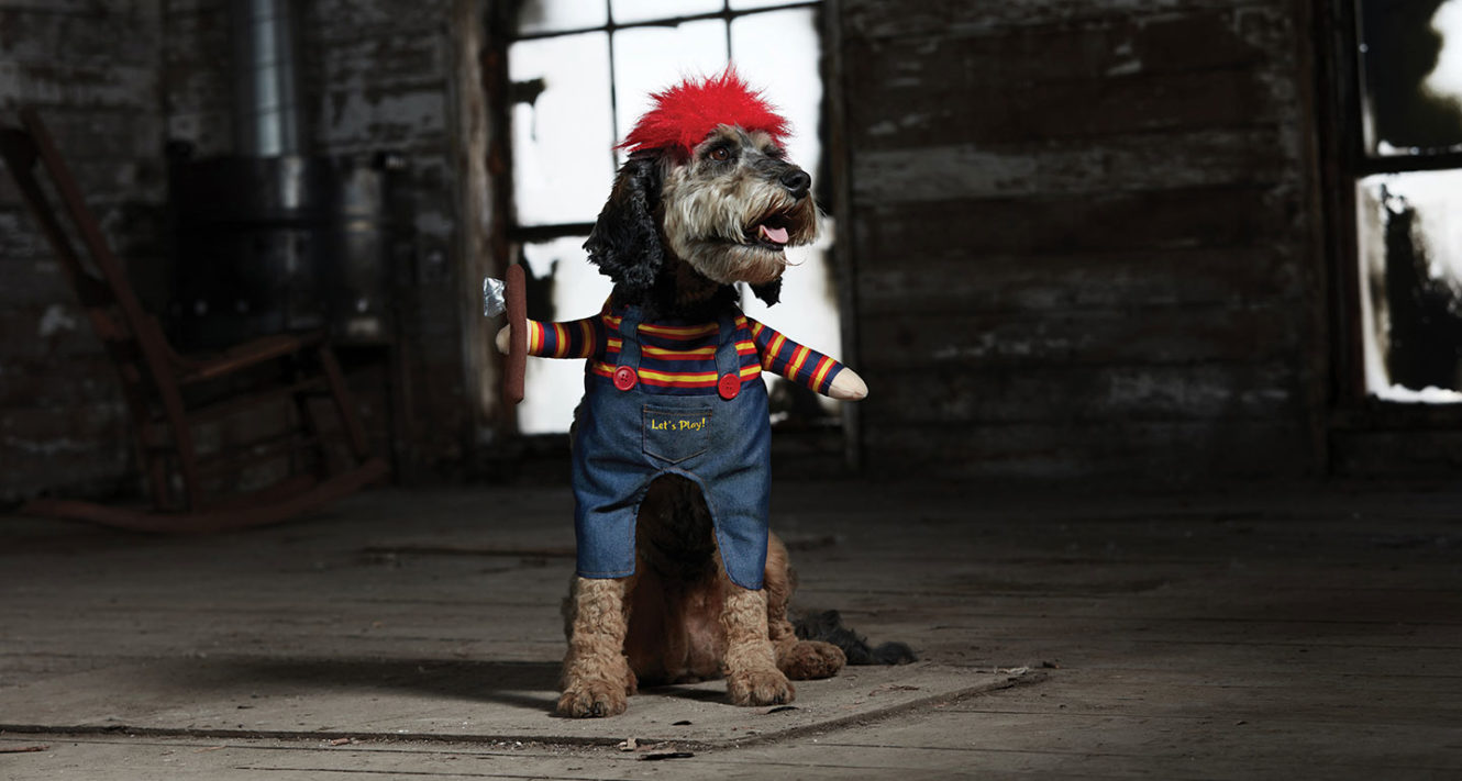 Scary Dog Costumes - dog chucky costume