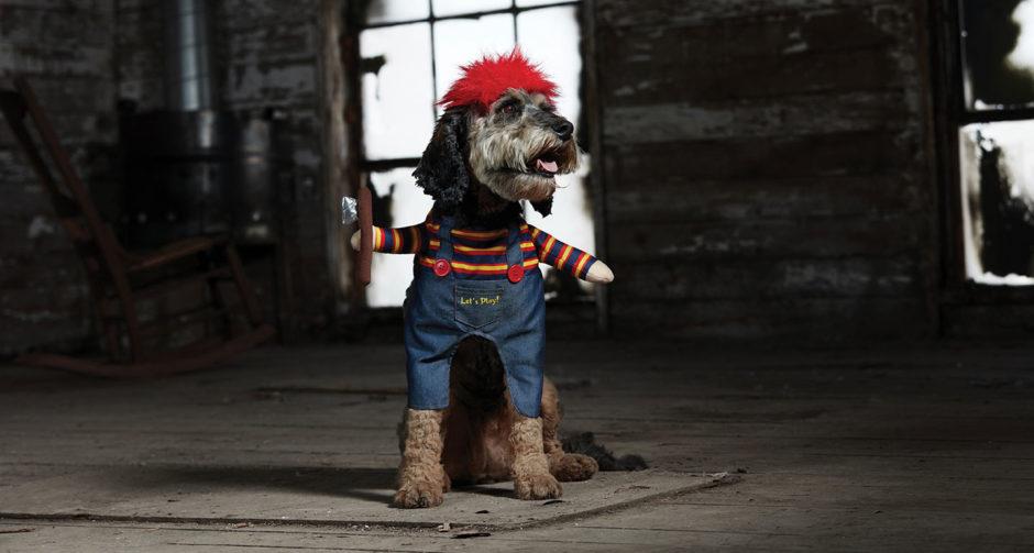 Scary Dog Costumes - dog chucky costume