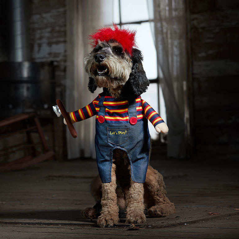 Scary costumes for dogs