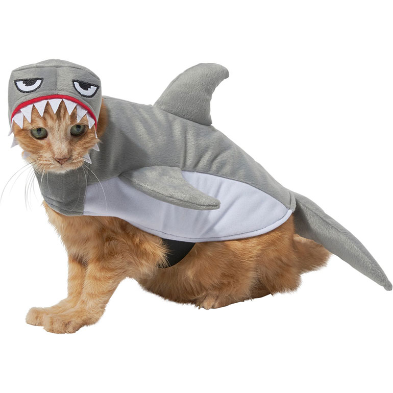 pet halloween costumes for cats - shark