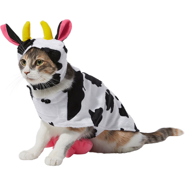 cute Halloween costumes for cats - cow