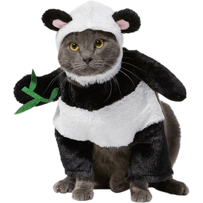 cute Halloween costumes for cats - panda