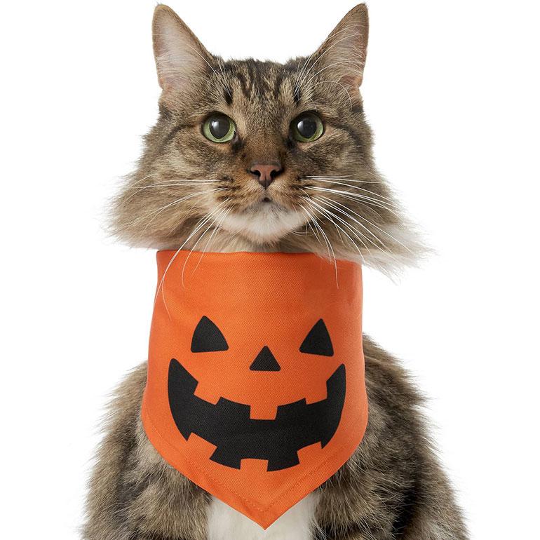 Halloween Cat Accessories - jack-o-latern bandana