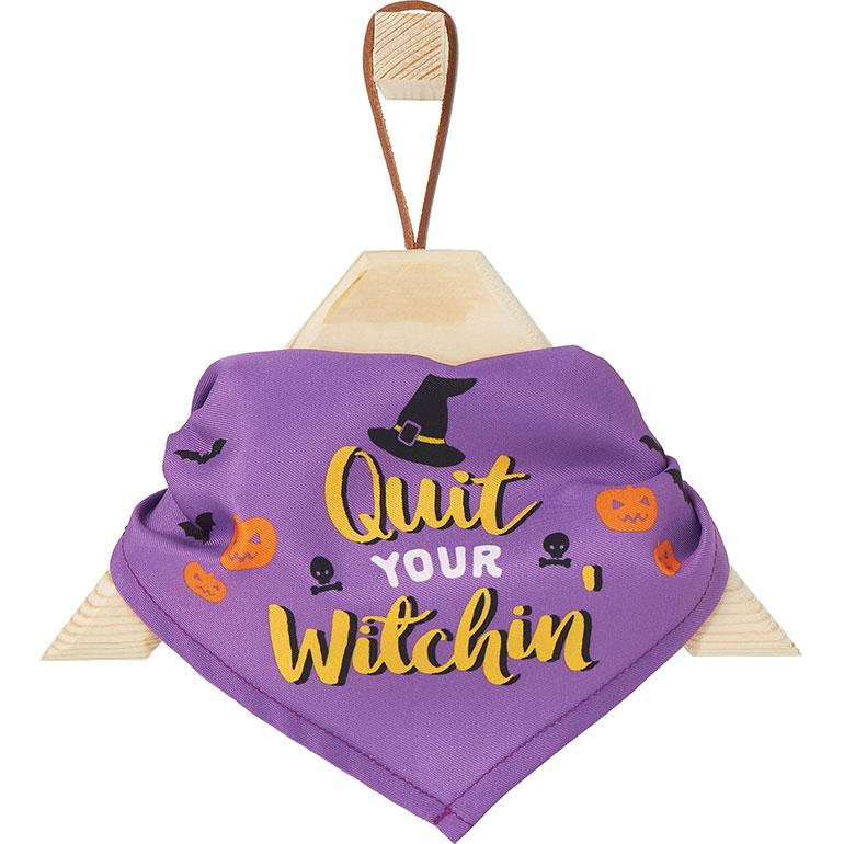 Halloween Cat Accessories - witching bandana
