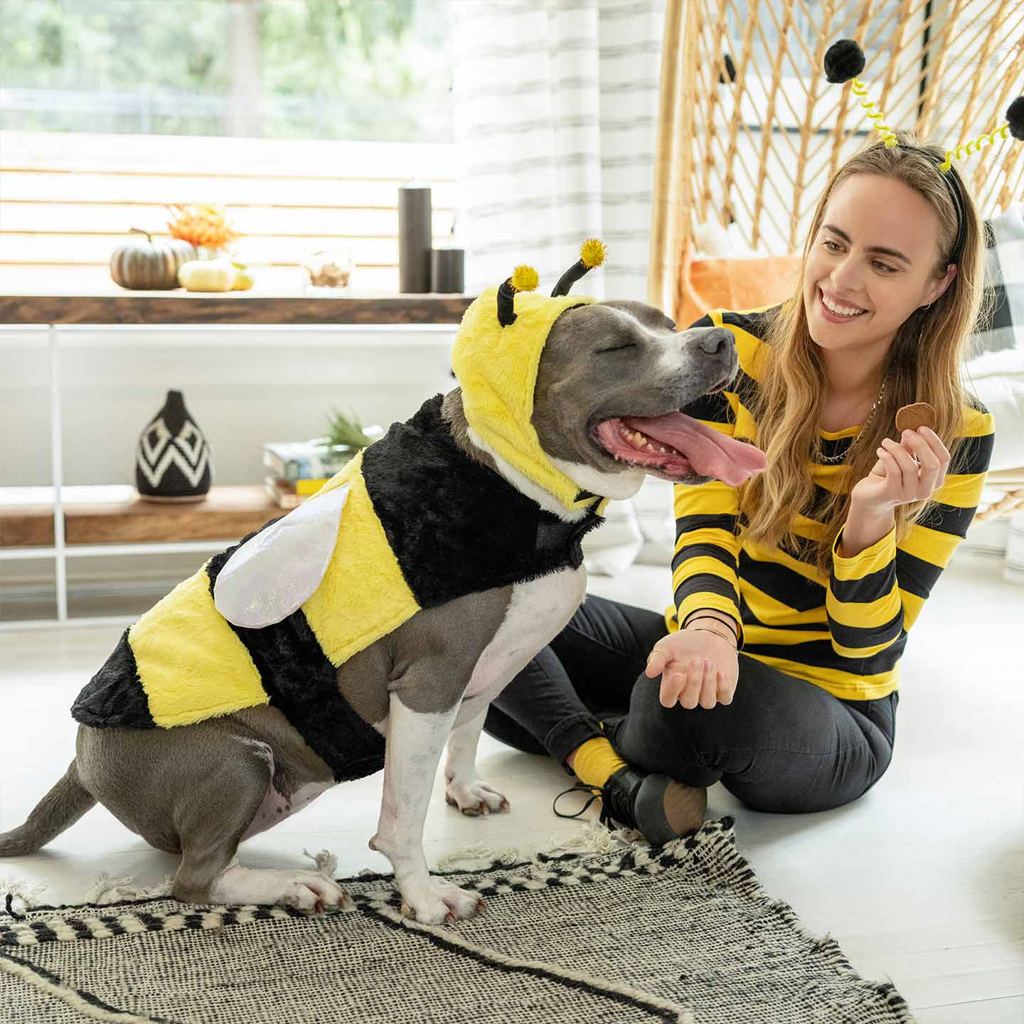 Halloween Costumes for Dog and Owner