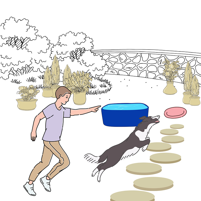 Dog Friendly Backyard Ideas That Ll Turn Your Space Into A K9 Oasis