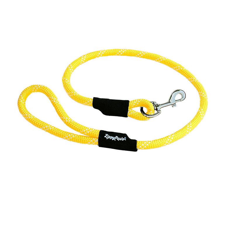 dog hiking gear - dog hiking leash