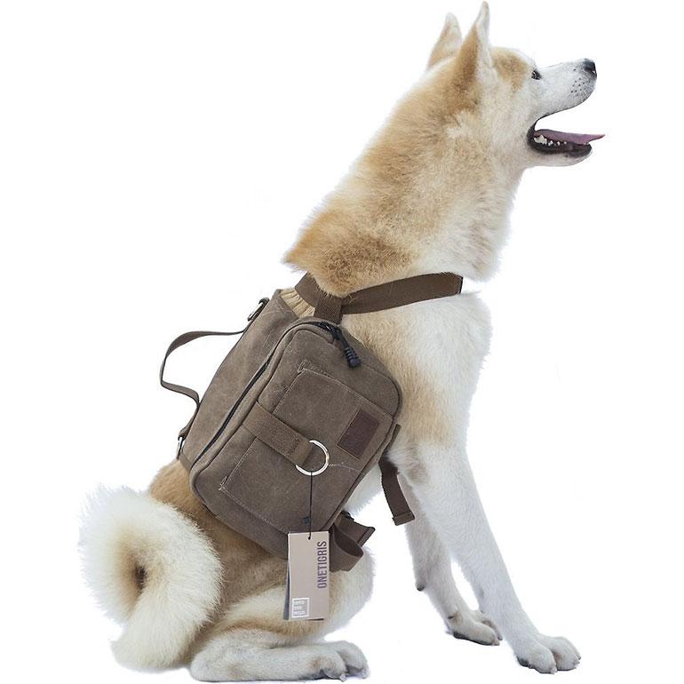 dog hiking gear - dog hiking backpack