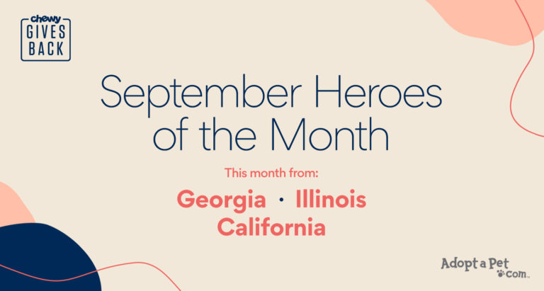 heroes of the month