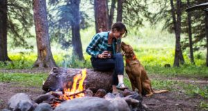 dog-friendly campgrounds