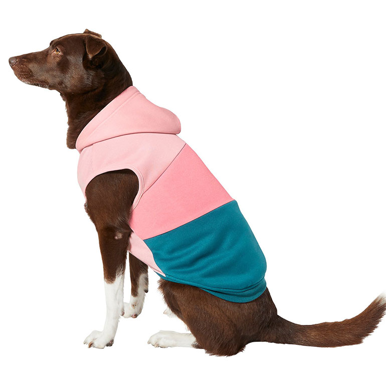 cute dog clothes - colorblock dog hoodie