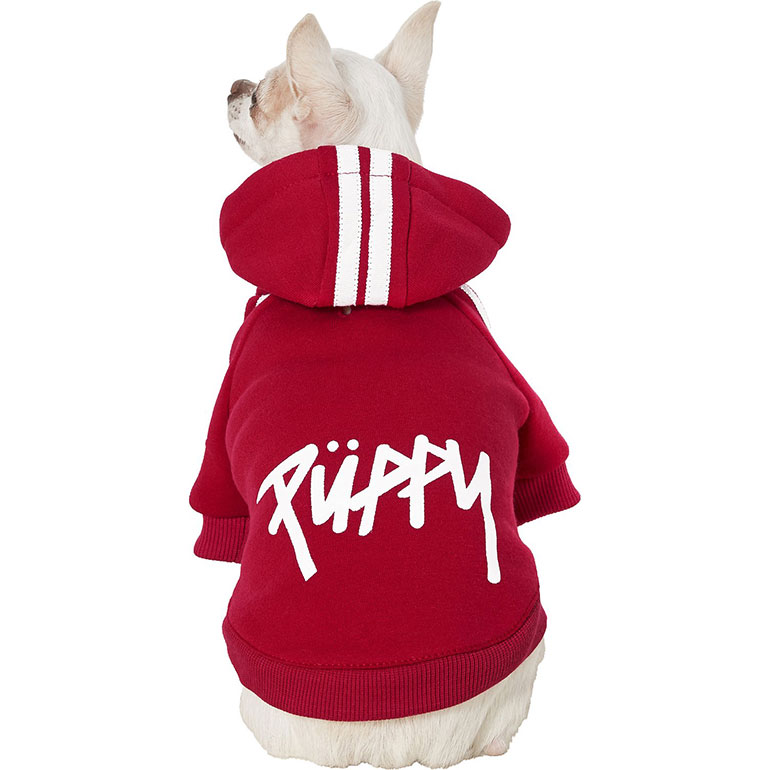 cute dg clothes - puppy hoodie