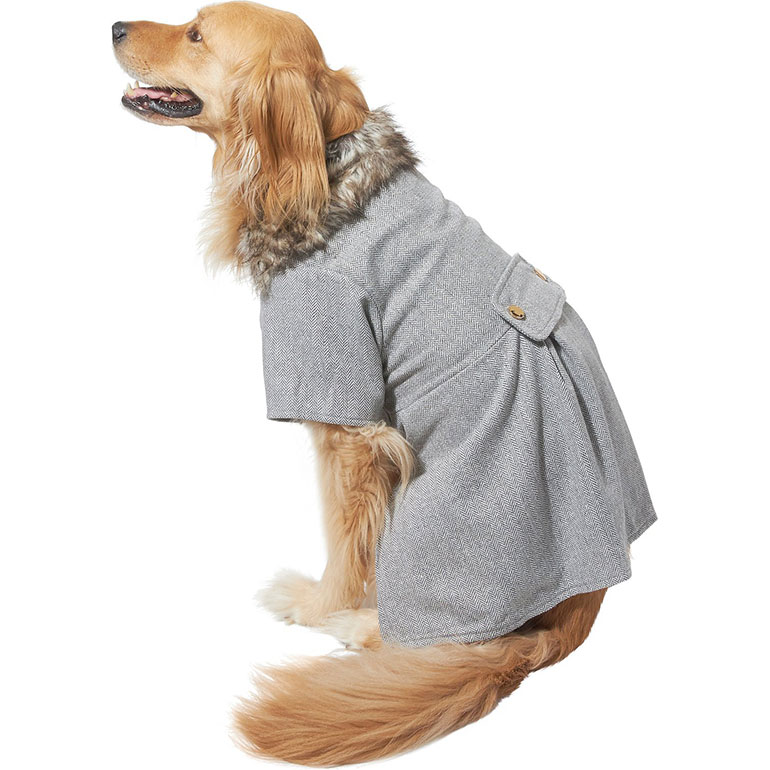 cute dog clothes for fall- dog jacket peacoat dress