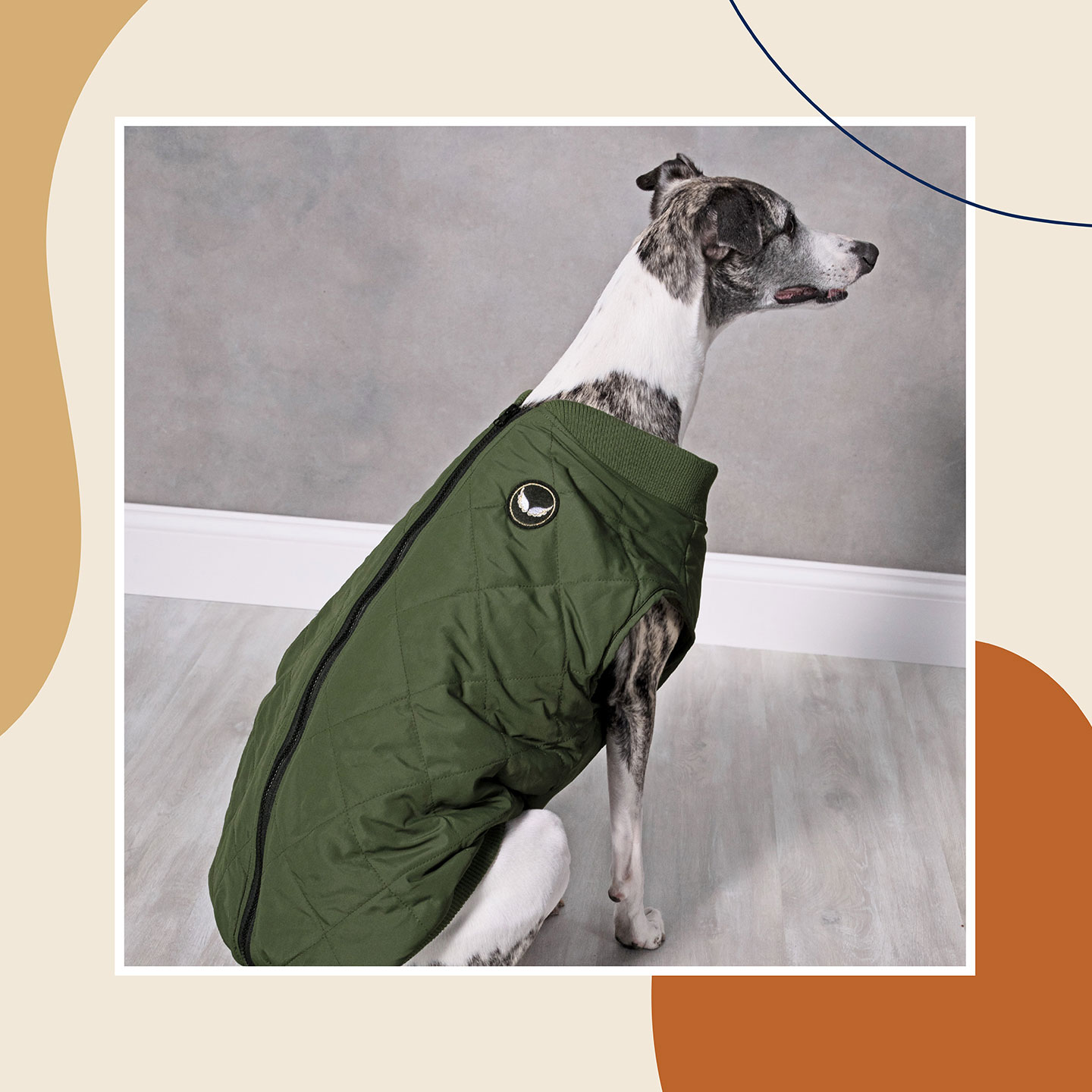 cute dog clothes - dog jackets for fall