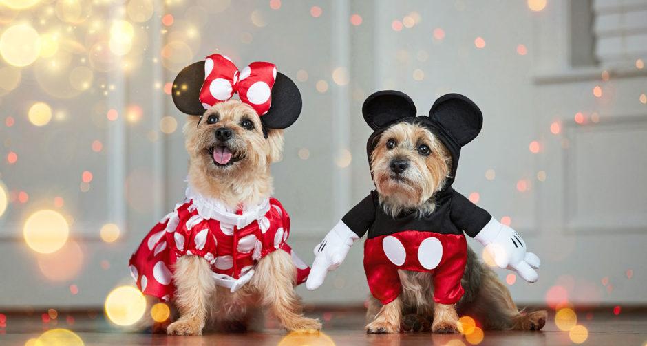 Disney dog costumes