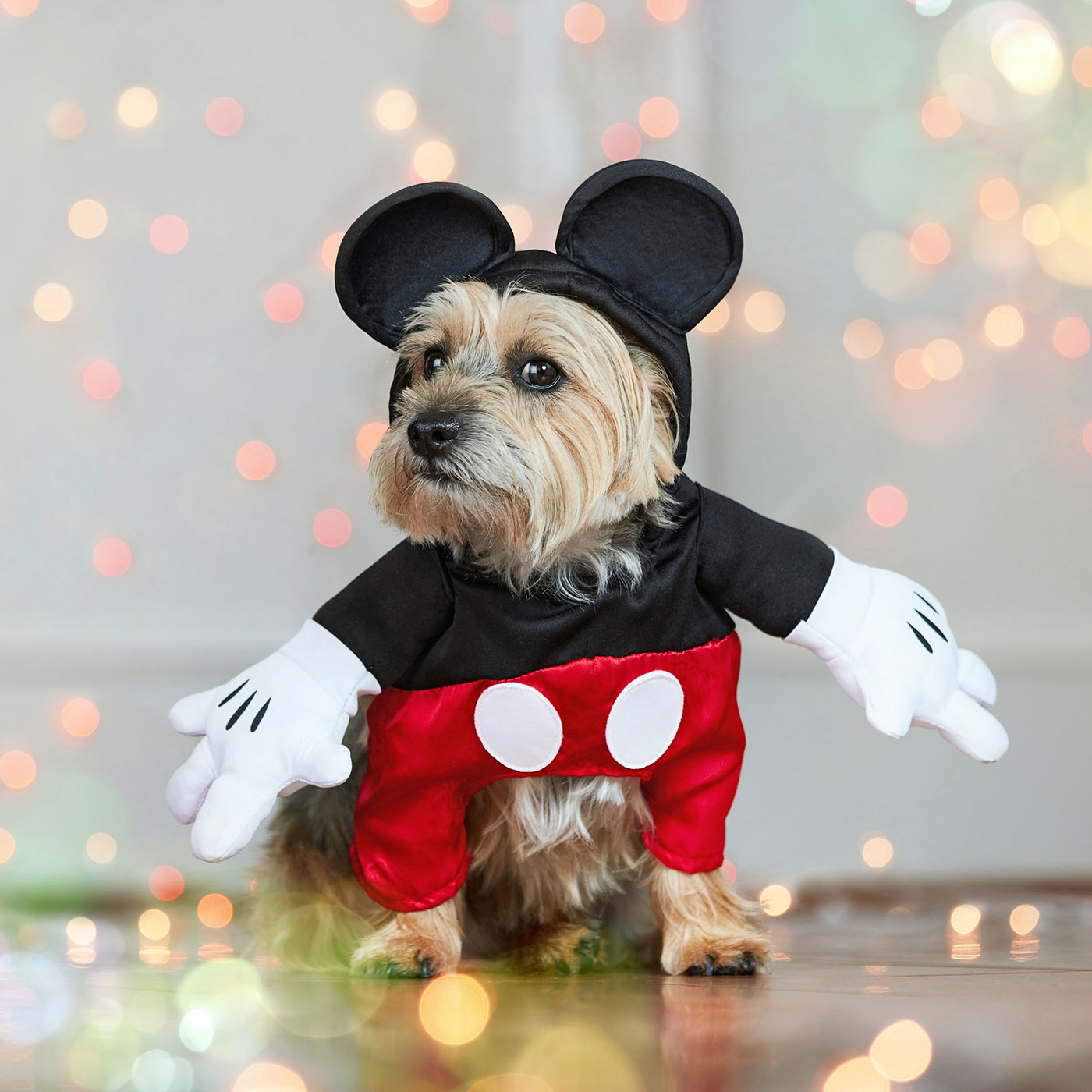 diesny dog costumes - Mickey mouse