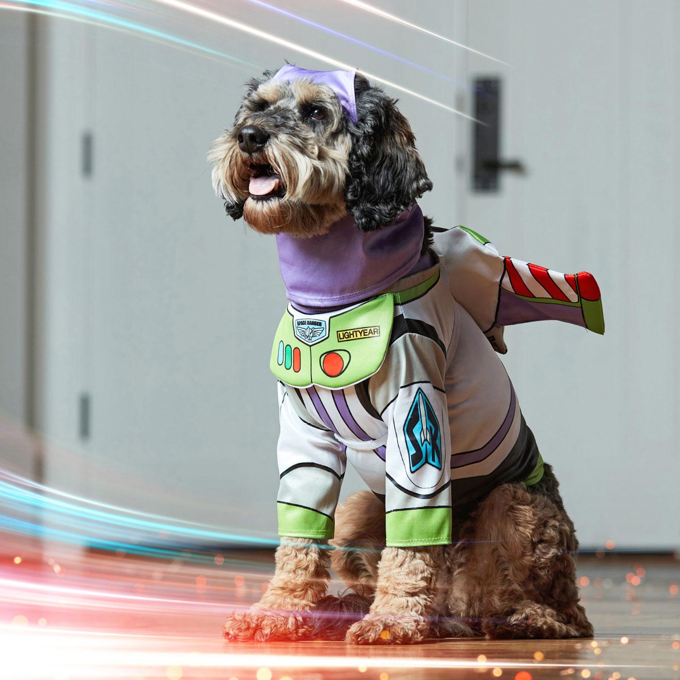 Diesny dog costumes - buzz lightyear