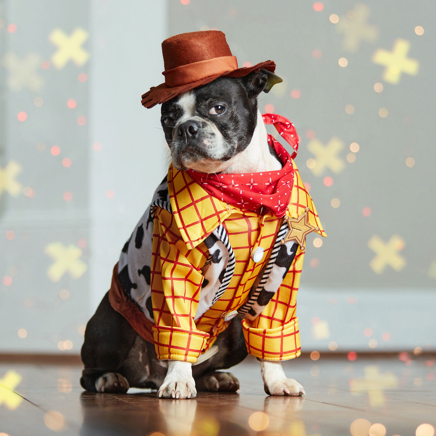 disney dog costume - woody dog costume from toy story