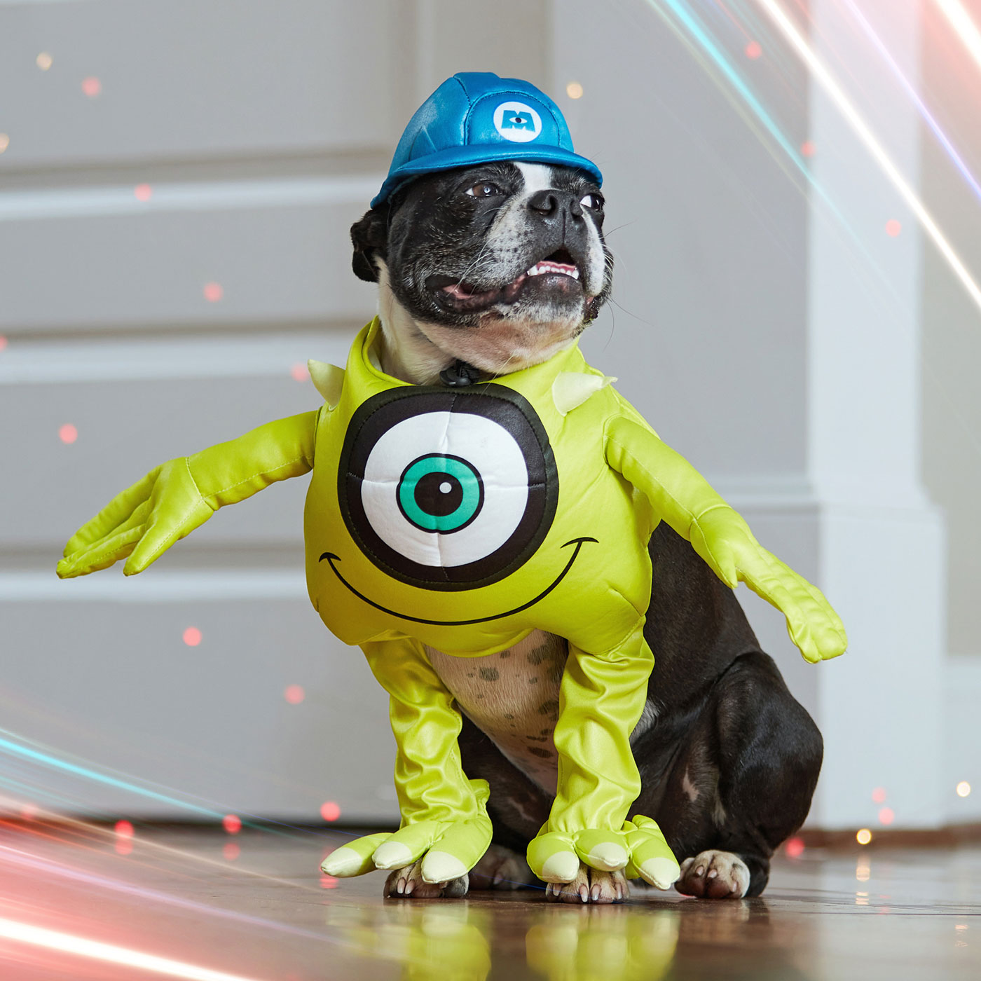 disney dog costumes - mike Wazowski  from Monsters Inc